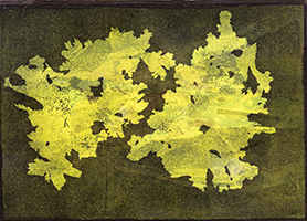 Caroline Younger: Yellow Lichens, 2019