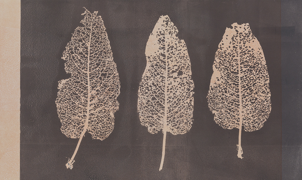 Caroline Younger: Leaves 2, 2016