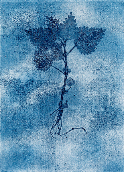 Caroline Younger: Nettle 4 Ghost, 2019